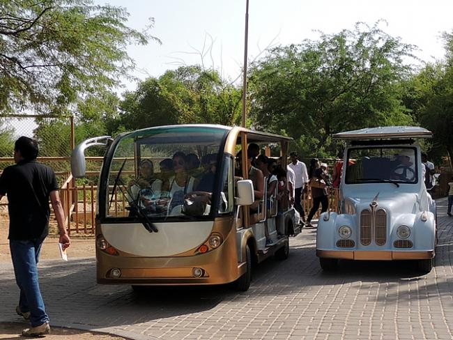 Rijke golf carts in Al Ain Zoo