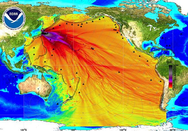 Tohoku earthquake waves